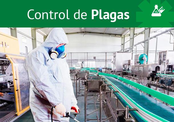 control de plagas en la provincia de sevilla