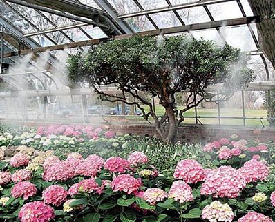 humidificacion de invernaderos en sevilla dagape